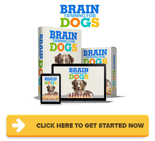 Download Brain Training For Dogs PDF