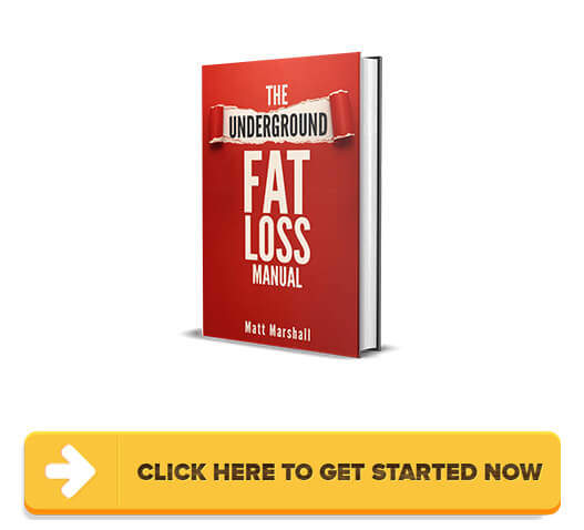 Download The Underground Fat Loss Manual PDF