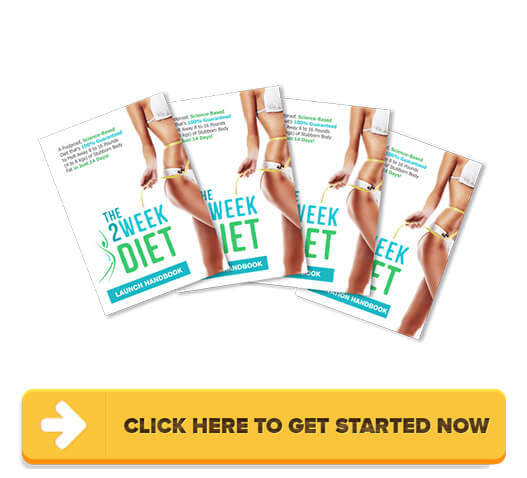 Download The 2 Week Diet System PDF