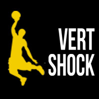 Vert-Shock PDF
