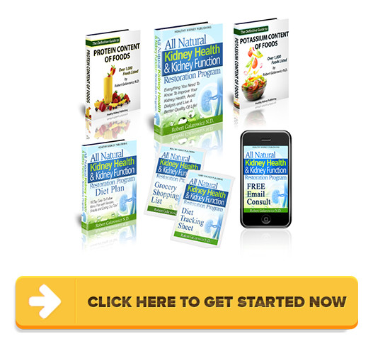 Download All Natural Kidney Health & Kidney Function Restoration Program PDF
