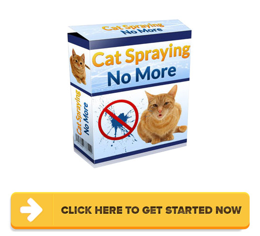 Download Cat Spraying No More PDF