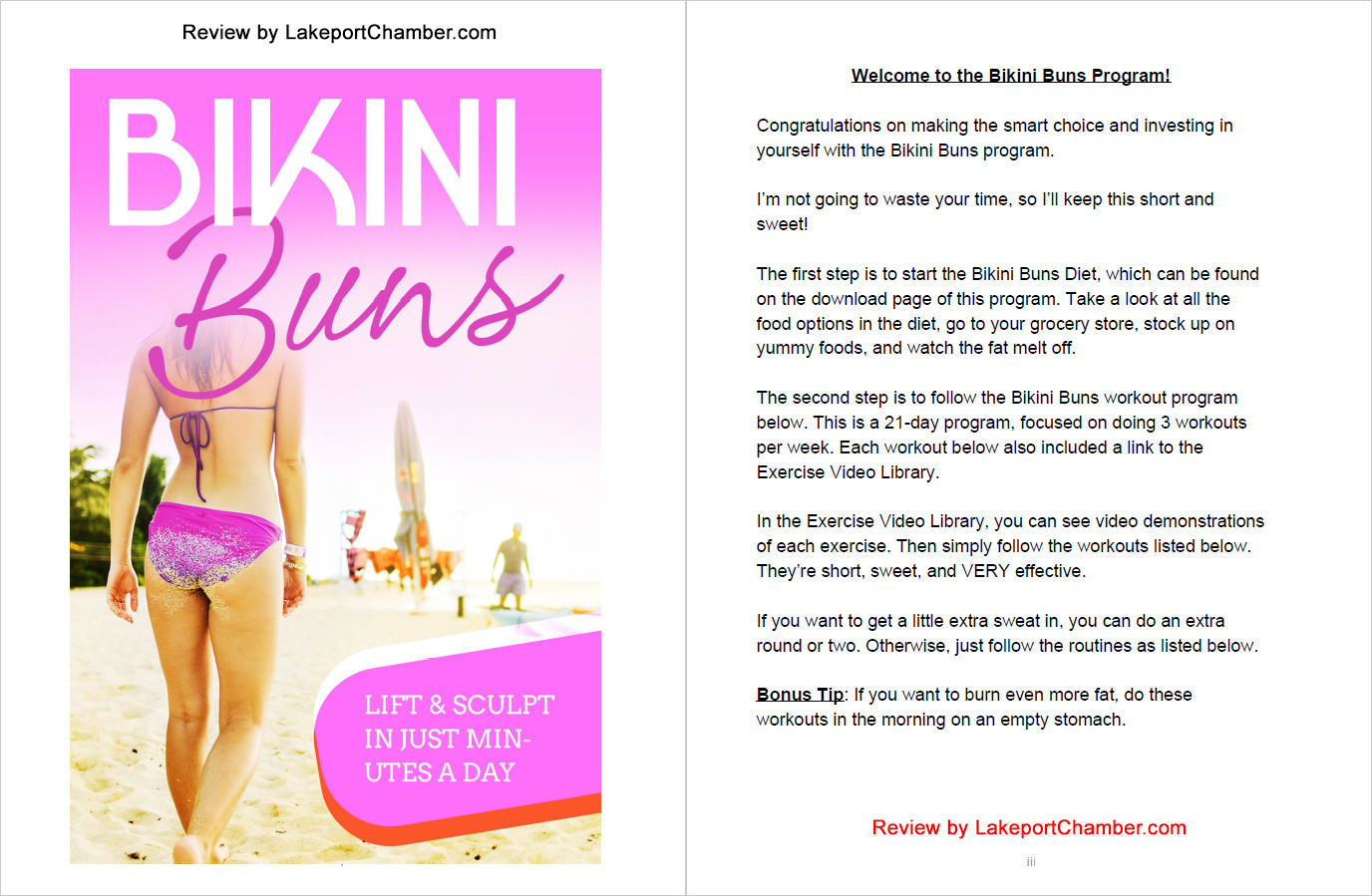 The Bikini Buns Program - Table of Contents